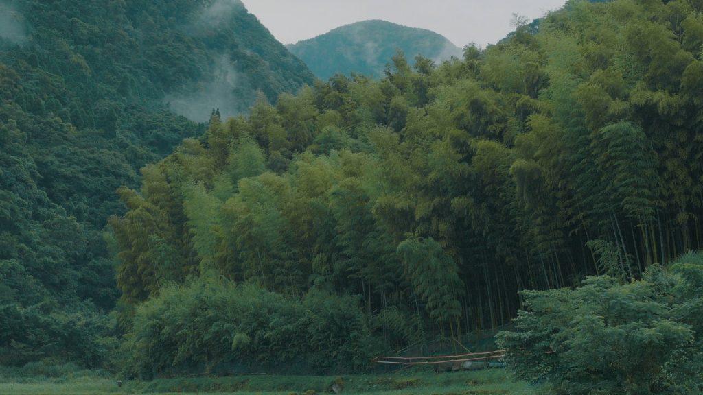 もののけ姫が住んでるような岩山